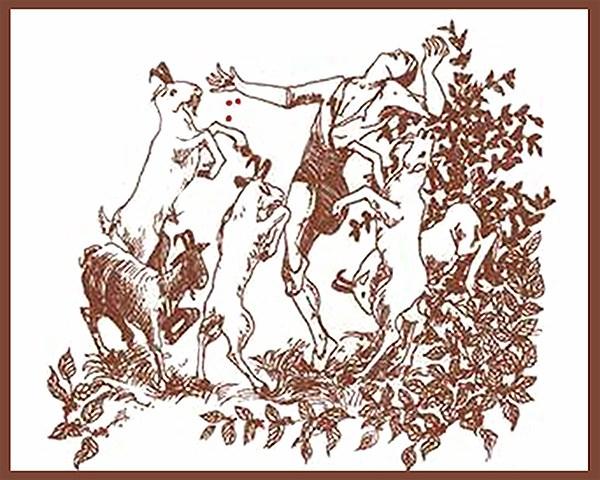Kaldi-Dancing-with-the-Goats-jayells-coffee